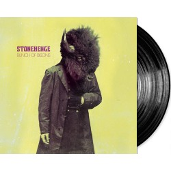 STONEHENGE - BUNCH OF BISONS - Limited Vinyl - RePress